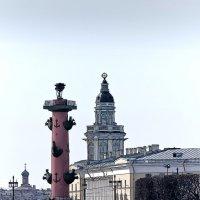 растральная колонна :: ник. петрович земцов