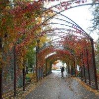 Парк, Саранск :: Динара Мосикова