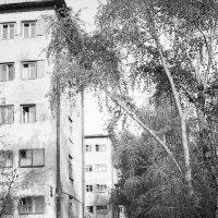 студенческие общежития в Лефортово :: aleksandr Крылов