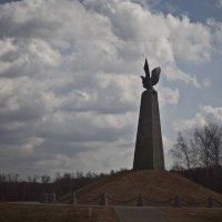 Сорваться и не взлететь :: Алла Шарафутдинова