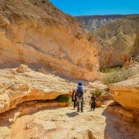 засохшая река в пустыне :: maria sela