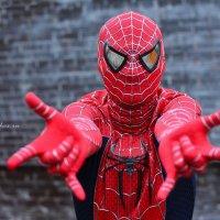 SpiderMan :: Kirchos Foto