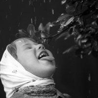 Вкус дождя :: Вера Шамраева