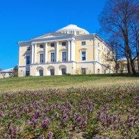 Весна в Павловске :: Денис Матвеев