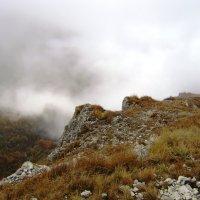 Кавказ :: Маргарита Сазонкина