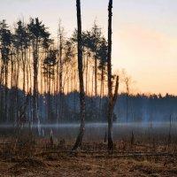апрельские рассветы :: sergej-smv