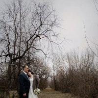 25 апреля 2014 :: Татьяна Костенко (Tatka271)