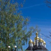 Екатерининская церковь в Чернигове :: Александр Крупский
