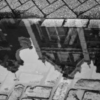Амстердам :: Олеся Семенова
