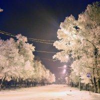 Зимний вечер :: vg154