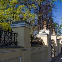 весна в Москве :: Лариса *