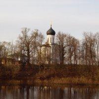 Покрова на Нерли. :: Андрей Зайцев