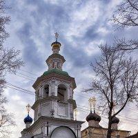 Церковь Дмитрия Прилуцкого на наволоке. Вологда :: Анатолий Тимофеев