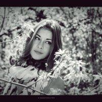Евгения :: Анастасия Светлова