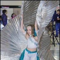 Бесплатный фестиваль День танца 2014 :: Илья Кузнецов