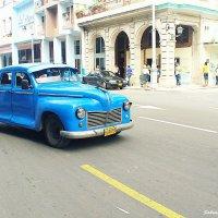 Blue devil :: Arman S