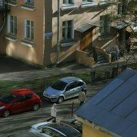 Солнечное утро :: Юлия Емелина