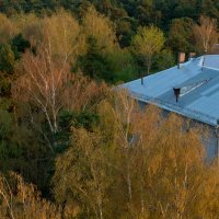 крыша дома моего :: Галина Петрова