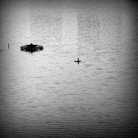 Одиночество :: Дмитрий Сопыряев