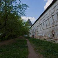 Весна и стены. :: Яков Реймер