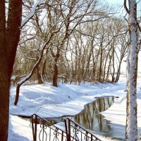 Зима :: Мария Богуславская