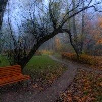 Утро в парке /Сокольники/ :: Василий Ярославцев