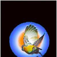 Птичка-хайку 3 :: Shmual Hava Retro