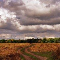 ...уж небо осенью дышало... :: Ольга Нарышкова