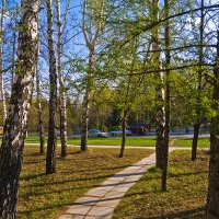 Весенняя листва :: Vadim Piottukh