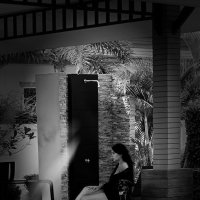 Дама с собачкой :: Sergey Lexin