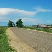 Придорожный пейзаж :: Наталья Покацкая