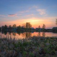 Весной на деревенском пруду! :: Nikita Volkov
