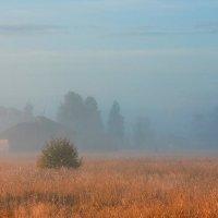 Деревенская... рассветно-туманная... :: Александр Никитинский