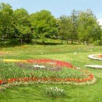 В парке :: Ростислав