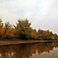 Осень(река) :: Татьяна Королёва