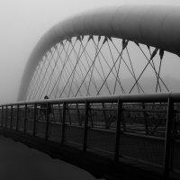 в тумане 1 :: Виктор