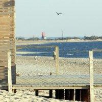 Фотосессия на пляже :: Леонид Соболев