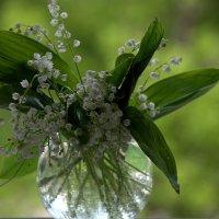 С праздником весны!!!! :: ФотоЛюбка *