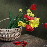 Свежесрезанные тюльпаны :: Ирина Приходько