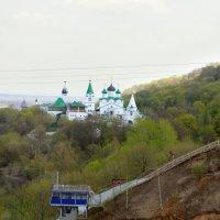Весна в разгаре :: Сергей Банков