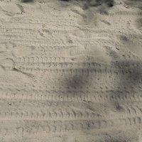 Следы на песке. :: Мила