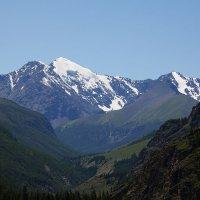 СевероЧуйский хребет, Горный Алтай :: Дмитрий Кучеров