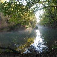 Река Черная. Крым :: Владимир Клюев