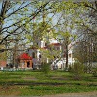 Весна :: Сергей Оржеховский