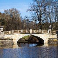 Старый мост в Павловском парке :: Сергей Залаутдинов
