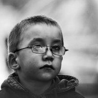 Маленький очкарик. :: Александр Степовой