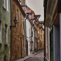 Таллин :: Ульяна Федотова