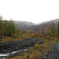 Осеньв тундре 4 :: Сергей Карцев