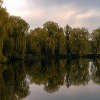 весна у пруда :: konsullll