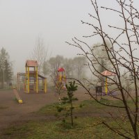 Утро в парке :: Евгений Герасименко